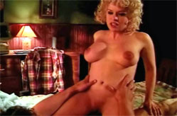Vintage couple having bedroom sex