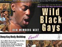 Wild Black Gays