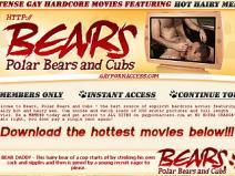 Bears Polar Bears And Cubs