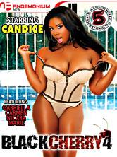 Black Cherry #4 DVD Cover